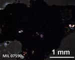 MIL07590_2.5XNCV.jpg
