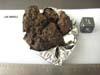 LAR 06605 Meteorite Sample Photograph