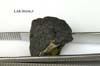 LAR 06636 Meteorite Sample Photograph
