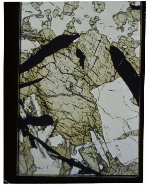 Color Thin Section photograph of Apollo 12 Sample(s) 12039,5 using transmitted light.