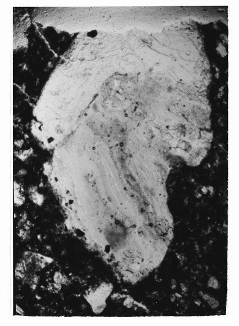 Thin Section Black and White Photo of Apollo 14 Sample 14307