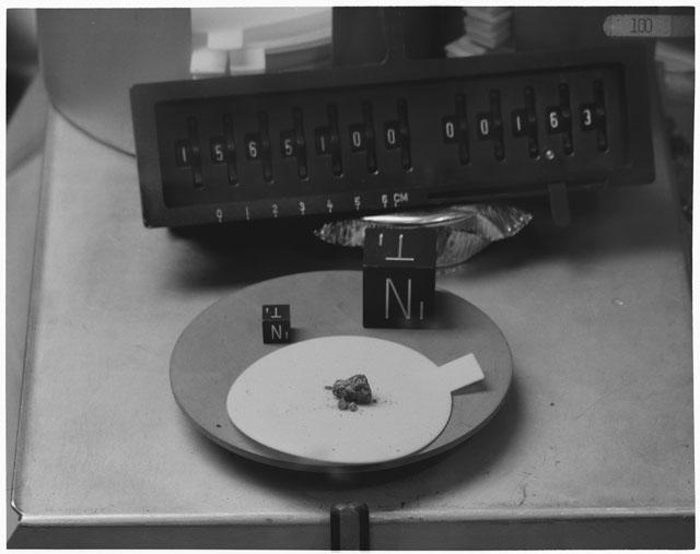 Inventory Photograph of Apollo 15 Sample(s) 15651