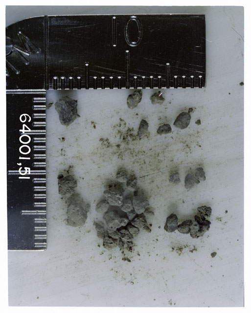 Color photograph of Apollo 16 Core Sample 64001,51; Processing photograph displaying >1 MM Core Fines .