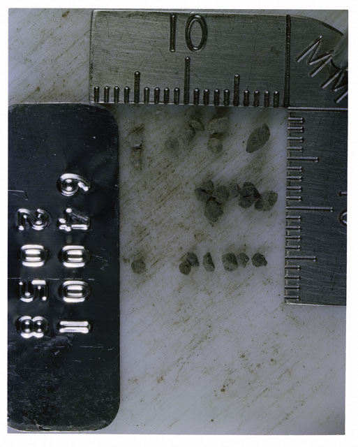 Color photograph of Apollo 16 Core Sample 64001,2058; Processing photograph displaying >1 MM Core Fines .