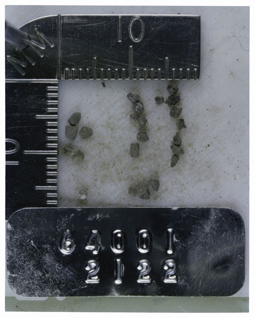 Color photograph of Apollo 16 Core Sample 64001,2122; Processing photograph displaying >1 MM Core Fines .