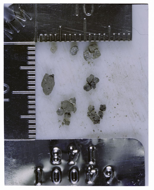 Color photograph of Apollo 16 Core Sample 64001,148; Processing photograph displaying >1 MM Core Fines .