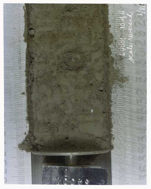Color photograph of Apollo 16 Core Sample(s) 64001,1; 10 of 11 Processing photograph of displaying Core with scale reversed.