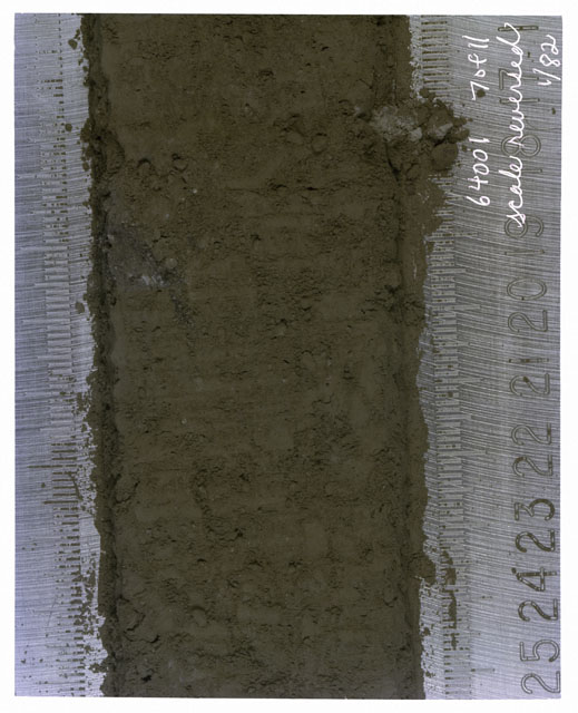 Color photograph of Apollo 16 Core Sample(s) 64001,1; 7 of 11 Processing photograph of displaying Core with scale reversed.