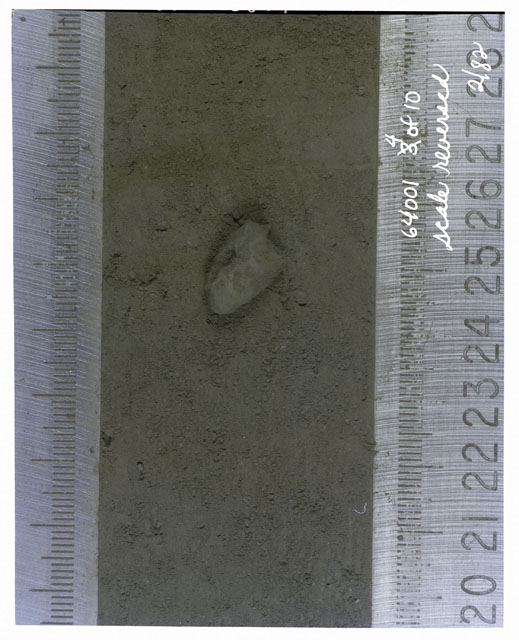 Color photograph of Apollo 16 Core Sample(s) 64001,1; 4 of 10 Processing photograph of displaying Core with scale reversed.