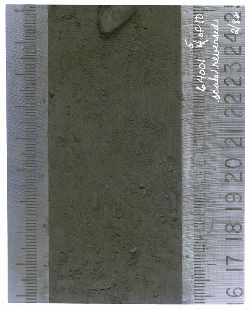 Color photograph of Apollo 16 Core Sample(s) 64001,1; 5 of 10 Processing photograph of displaying Core with scale reversed.