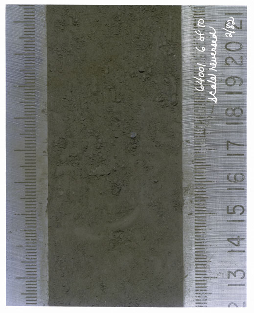 Color photograph of Apollo 16 Core Sample(s) 64001,1; 6 of 10 Processing photograph of displaying Core with scale reversed.