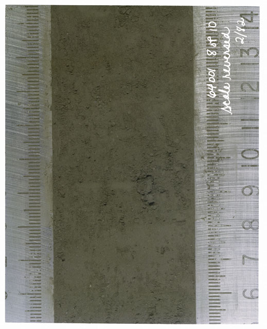 Color photograph of Apollo 16 Core Sample(s) 64001,1; 8 of 10 Processing photograph of displaying Core with scale reversed.