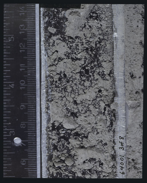 Color photograph of Apollo 16 Sample(s) 64001,6001; 3 of 8 Processing photograph displaying peel side Core at 5.5-14 cm depth.
