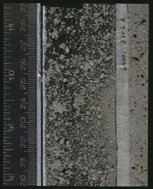 Color photograph of Apollo 16 Sample(s) 64001; 3 of 6 A Processing photograph displaying peel Core at 20-29 cm depth.